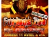 2009-affiche-fz-grappes-new2-avril-2009