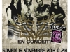 2013-affiche-fz-pacific-16-novembre-2013-mike-bbf-new-3